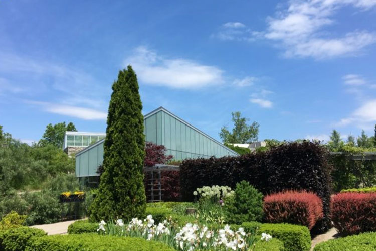 View of Toronto Botanical Gardens venue space during the day